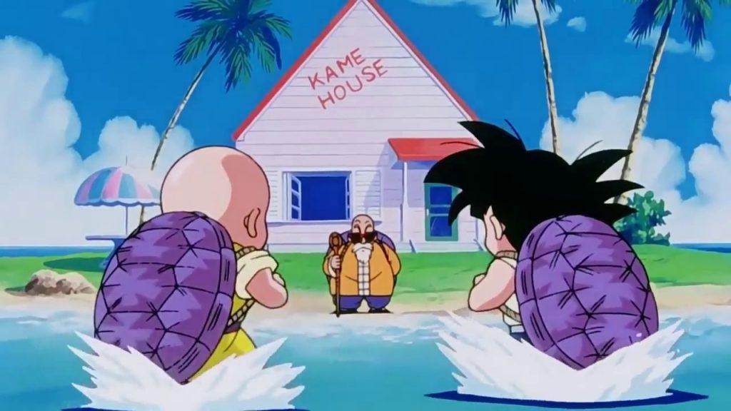 goku, krillin, entrenamiento goku, krillin y goku entrenando, maestro roshi